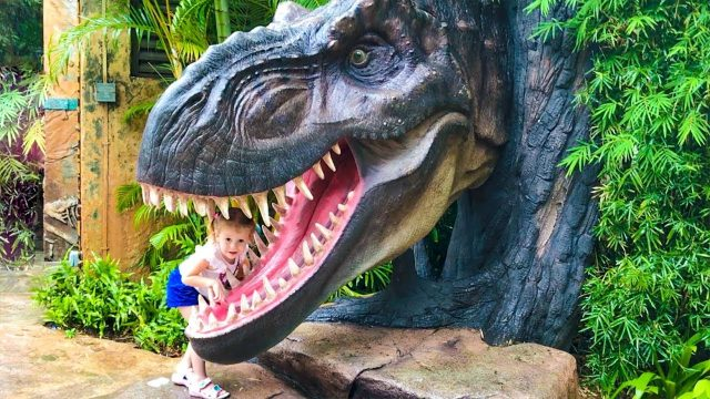 The Best Outdoor and Indoor Playgrounds for kids