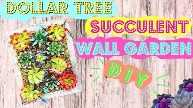 DOLLAR TREE DIY| SUCCULENT WALL GARDEN!!!