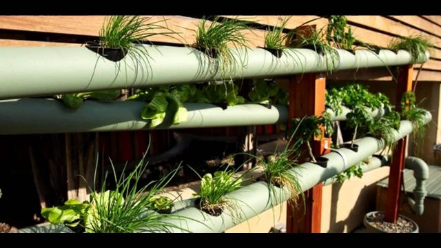 Cool hydroponic vertical garden ideas