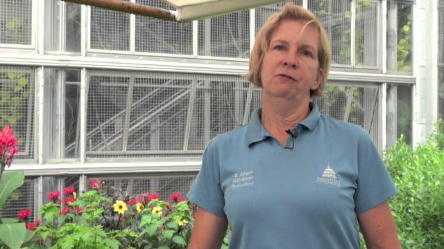 Gardener – Career Spotlight