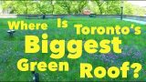 ♻️ Where Is Toronto's Biggest Green Roof? ♻️