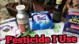 Which pesticide i use, कोन से कितनाशक मे उपयोग करता हूँ