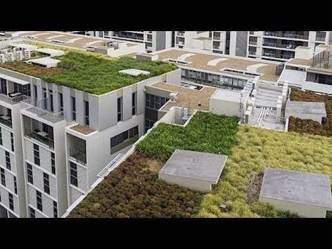 #WeCanSolveThis: Green Roofs