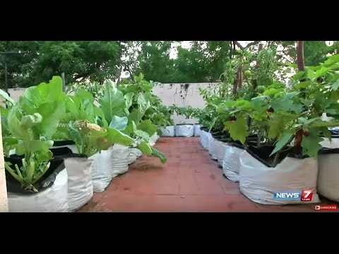 Learn about TN Govt subsidy for setting up terrace gardens | Poovali | News7 Tamil