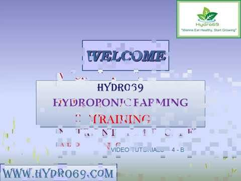 4.HYDROPONIC SYSTEMS(DEEP WATER CULTURE)