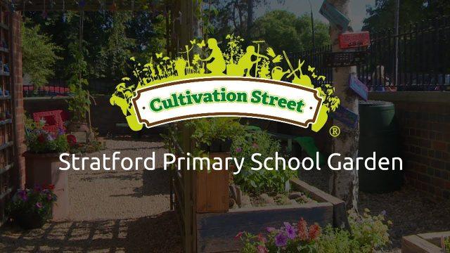 Stratford Primary School Garden
