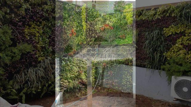 vertical garden murah dan awet