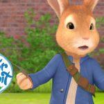 Peter Rabbit – Danger in the Garden | Cartoons for Kids