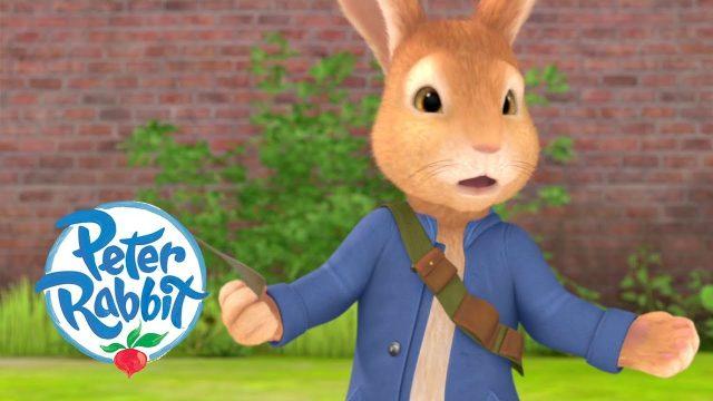 Peter Rabbit – Danger in the Garden   Cartoons for Kids
