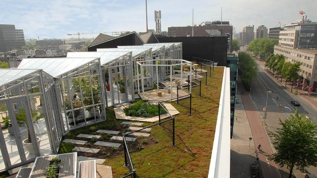 Zoku (Metropoolgebouw – Metro Pool Building) Roof Garden – Project of the Week 10/9/17