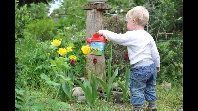 New Gardening Ideas for Kids – Build Your Own DIY Kid's Corner