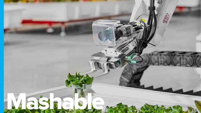 This Hydroponic Farm Is Run Entirely By Robots