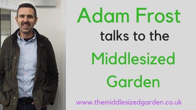 Adam Frost's top tips for your garden redesign