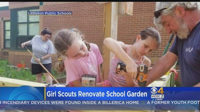 School Garden Lessons