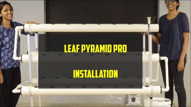 Getting Started – Leaf Pyramid One (Hydroponic Home System) – Future Farms (India)