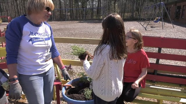 School Gardens Are Great For Learning, But Require Lots of Support