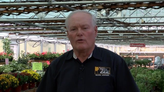 Valley Farms owner offers indoor gardening tips