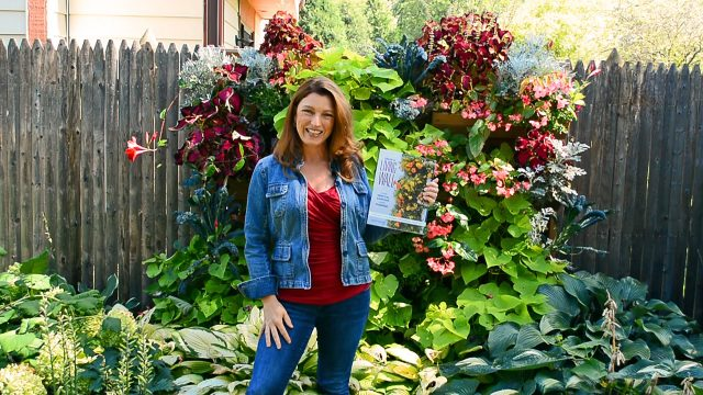 How to Grow a Living Wall Garden (a Book Trailer)