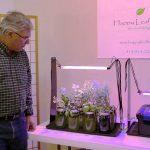 Growing an Indoor Herb Garden | The Passive Hydroponic Method