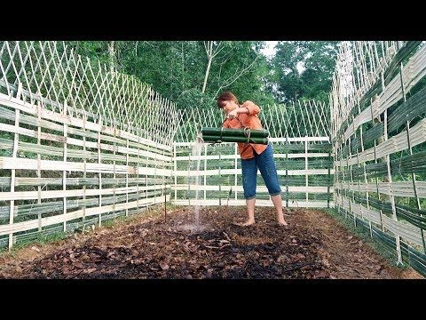 Survival Skills: How to Grow a organic vegetable garden – Part2