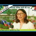 Roof-top Organic Farming : Priya in Mumbai grows vegetable with household organic fertilizers