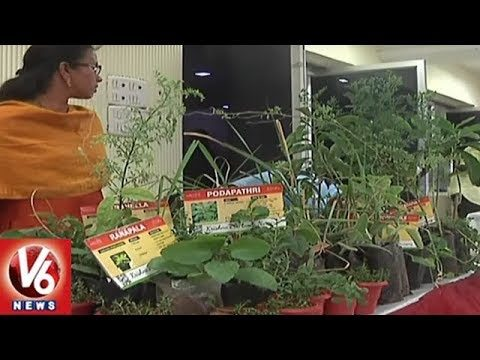 Rythu Nestham Foundation Organizes Awareness Programs On Roof Gardening | V6 News