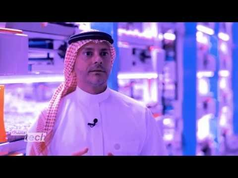 Vertical farms on the rise in the UAE