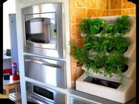Indoor vertical gardening ideas