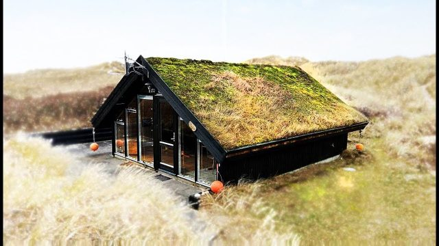 Rural Homes Have Grass Roof Design | Unique And Fancy | For 4 People