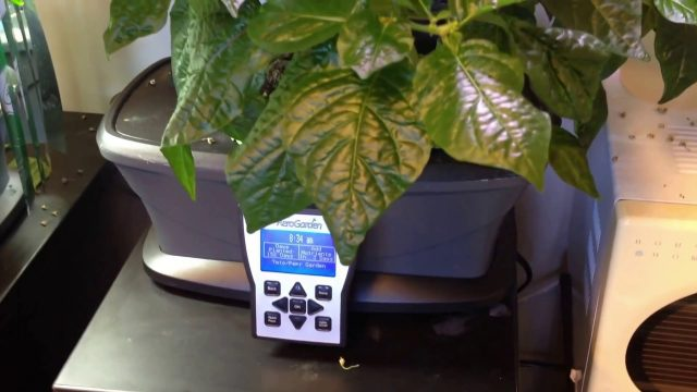 AeroGarden – Evaluation for Indoor Gardening