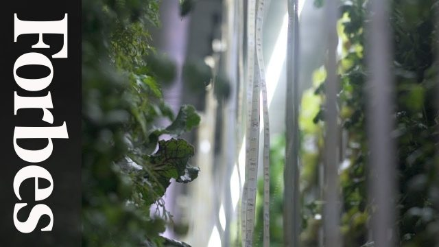 Freight Farms Brings Vertical Farming To The Masses | Forbes