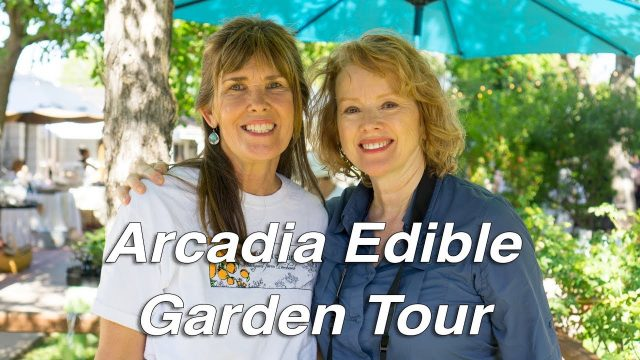 EDIBLE GARDEN Tour  | Phoenix, Arizona | 4 Beautiful Gardens!