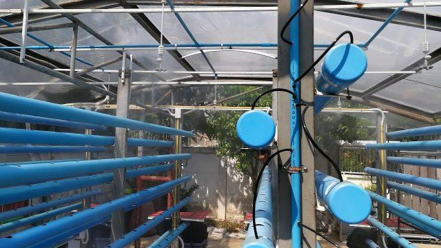 Verticle Farming Mist System พ่นหมอก