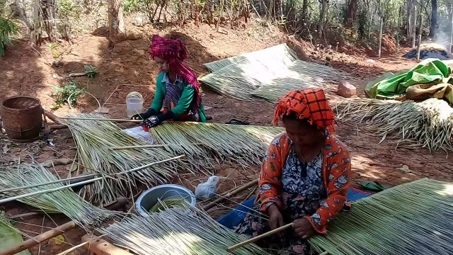 Making PA OH's traditional Cogon grass roofing