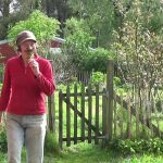 A Year In Our Vegetable Garden – April!