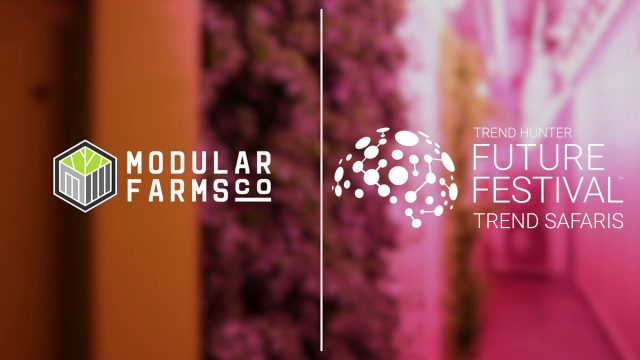 Containerized Indoor Farming Units | Safari Series: Modular Farms