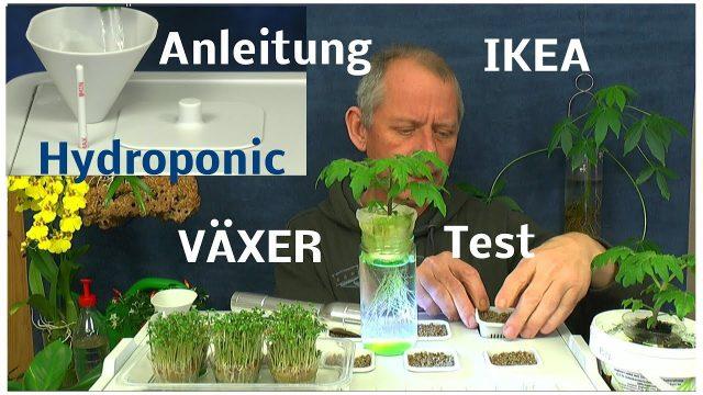 IKEA Hydroponic System VÄXER installieren und in Betrieb nehmen / Die Aussaat Kräuter