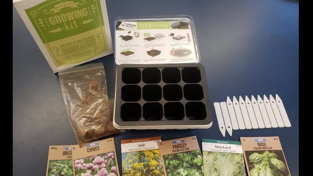 GROWING OUR OWN FOOD?! EASY GARDENING KIT FOR KIDS AND BEGINNERS! part 1