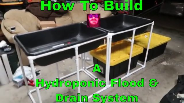 How to build a hydroponic flood and drain system – A New Custom DIY Build