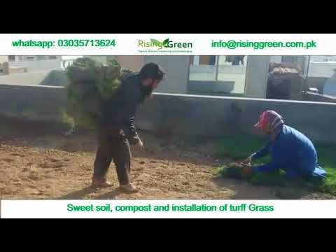 How we make rooftop lawn in pakistan