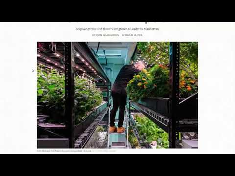 Custom Ordered Farming For Chefs   Indoor Urban Farming