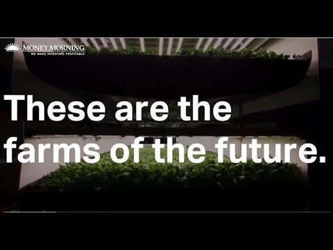 The Farms of the Future Are Here