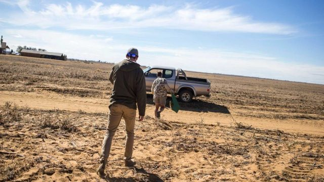 South Africa Begins Land Expropriations from White Farmers?
