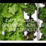 Verticle Gardening Versus Regular Farming
