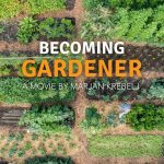 Becoming Gardener – no dig vegetable garden with a tiny house