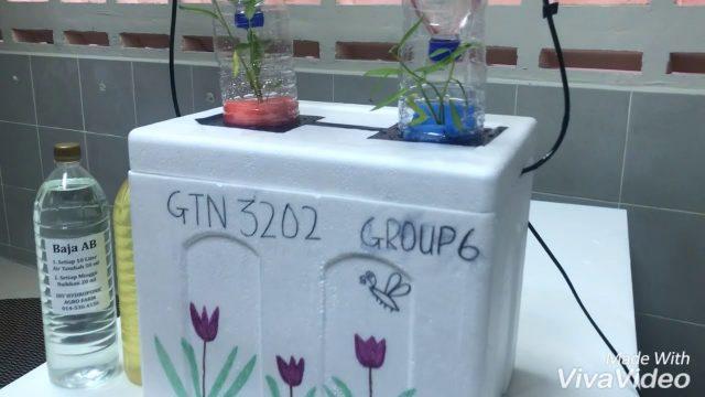 DIY Hydroponic System (GTN3202) UMT