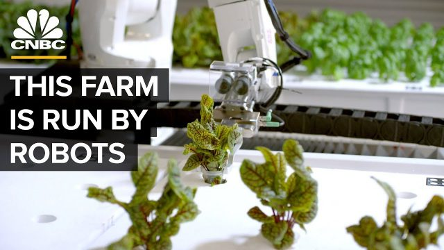 Watch Robots Grow Food Without Farmers