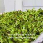 Vertical Farming: Wenn die Landwirtschaft in die Stadt kommt
