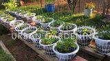 Hydroponic Wicking Gutter Garden Urban Gardening