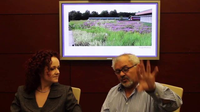 The Great Green Roof Review by Jenny Hill and Terry McGlade